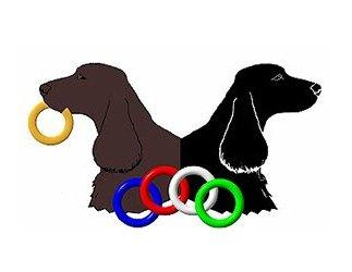 2009 National Logo for portfolio
