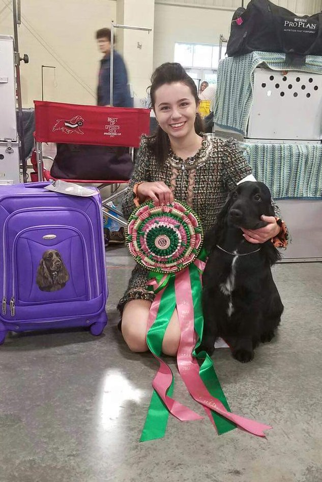 Aria and Ringo Best Junior Handler at the National Speciality 2017